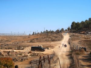 PageLines- PalestineIII-min1-min.jpg